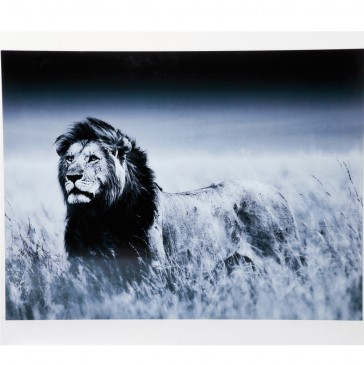 OBRAZ GLASS LION KING STANDING KARE DESIGN
